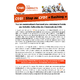 Tract Stop au CFDT BASHING